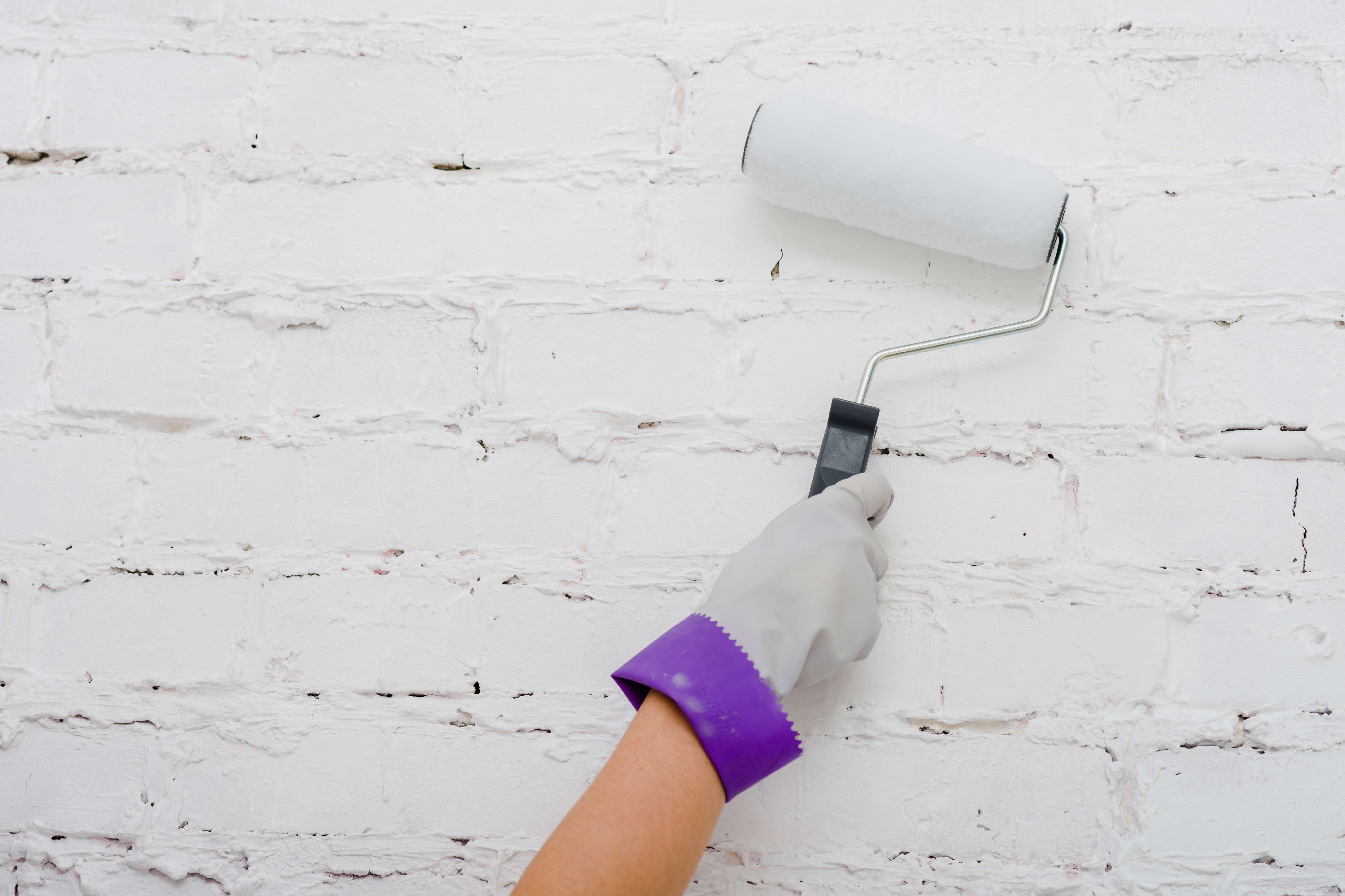 renovar paredes