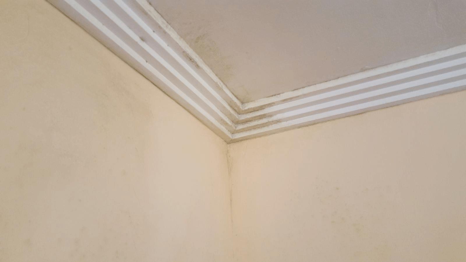 Diferencias entre la humedad por filtraci n y por - Humedad por condensacion en paredes ...